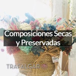 COMPOSICIONES SECAS Y PRESERVADAS