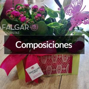 COMPOSICONES CON PLANTAS