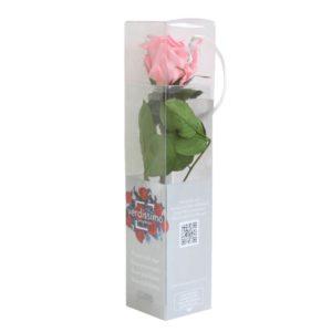 Rosa Eterna Rosa Mini