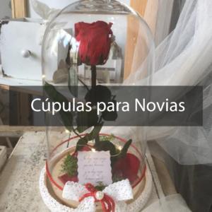 CÚPULAS NOVIA